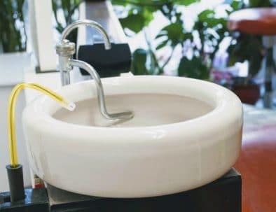 плювалник на зъболекарски стол на д-р Попадийска
